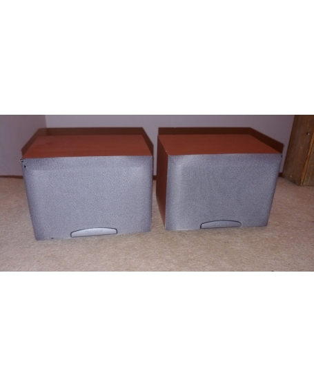 Sony SS-SR250 Surround Speaker ( PL )