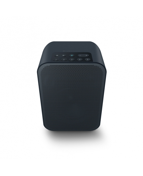 Bluesound Pulse Flex 2i Portable Wireless Multi-Room Music Streaming Speaker